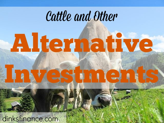 cattle investment, alternative investment, investment tips, investment advice