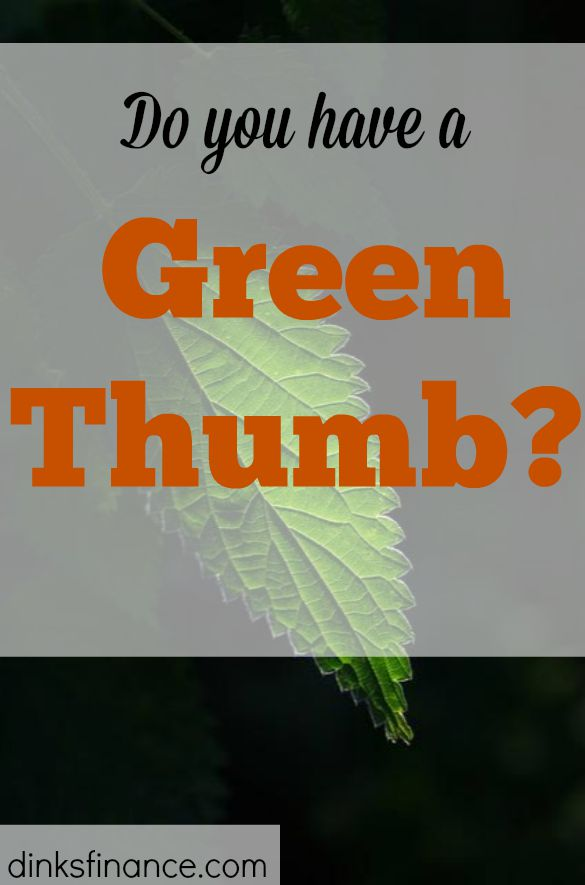 green thumb, taking care of plants, gardening