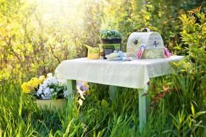 garden budget