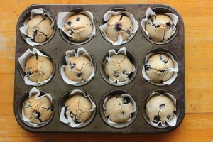 muffins-1047049_640