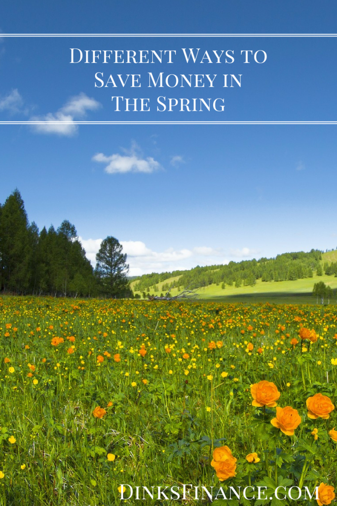 Different Ways to Save Money in the Spring
