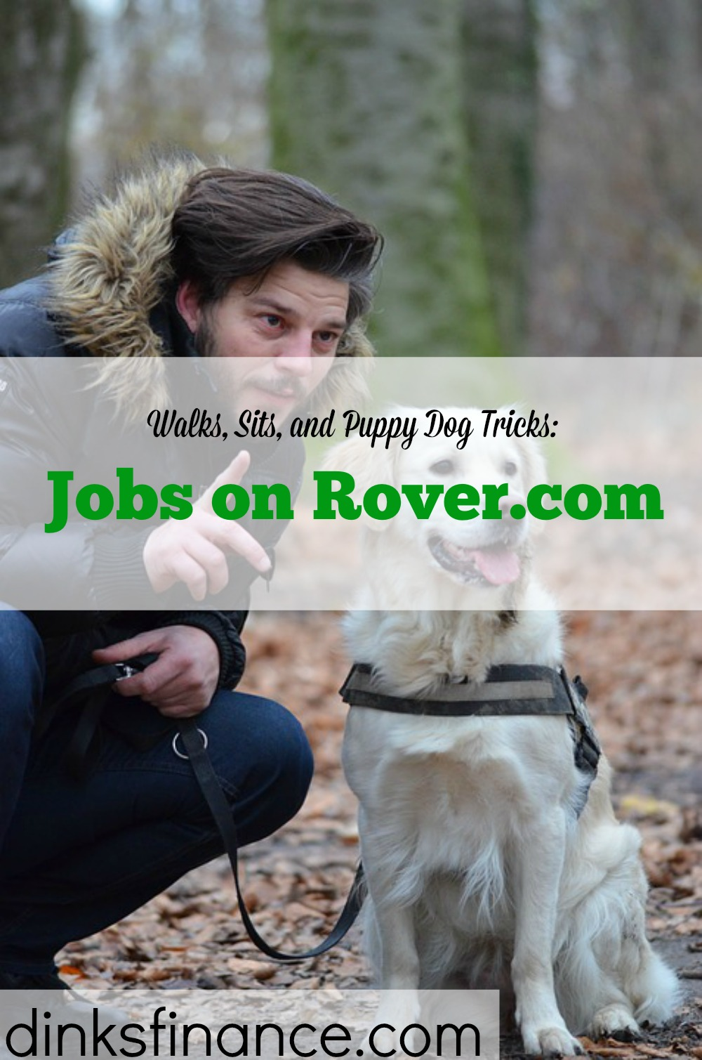 dog walker, jobs for dog lovers, rover.com