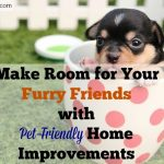 Make Room for Your Furry Friends with Pet-Friendly Home Improvements, pets, pet-friendly environment, pet safety