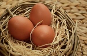 egg-1237755_640