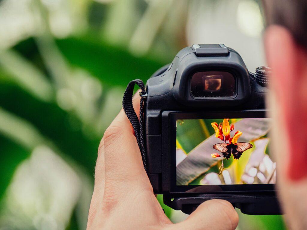 Money as an Amateur Photographer