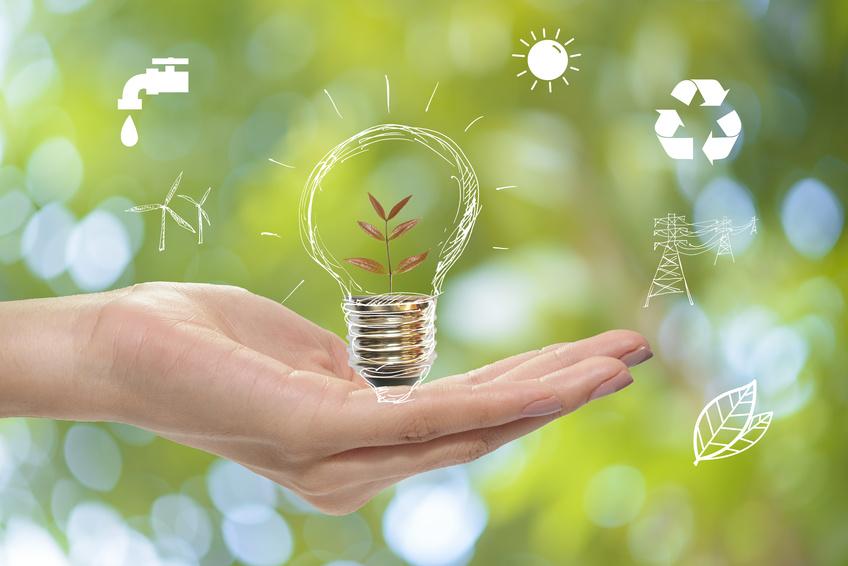 eco-frinedly ideas