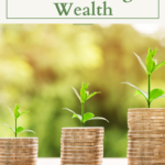 Better Models for Building Wealth