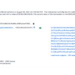 Massive bitcoin transaction